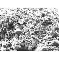 Глина Белая (Каолин косметический), лечебно-косметическая, 100 грамм
