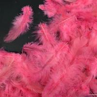 Перья карминово-розовые 4*8 см, набор 100 шт