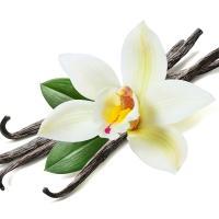 Vanilla Spark, 10 гр, отдушка Украина