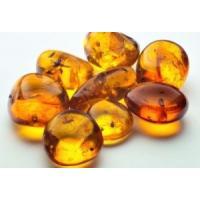 Янтарная кислота (порошок), 50 гр