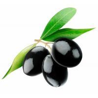 Эмульгатор Olivem ® 1000™, 50 грамм