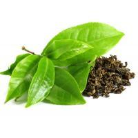 Зеленый чай, 10 мл, натуральное эфирное масло