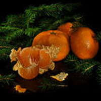 Елка и мандарины, 10 гр, отдушка Франция